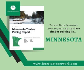 Minnesota Stumpage Report